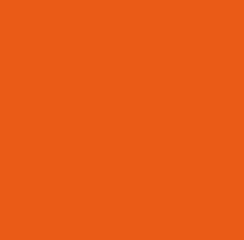DIH2_Logo